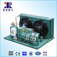 Refrigeration Compressor Freezing Condensing Unit For Fresszer Commercial Food