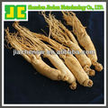 High Quality Panax panaxoside Ginseng Extract