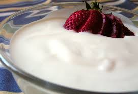 probiotic frozen dry homemad yogurt