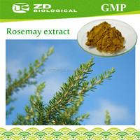 Pure Food Grade Rosemary Extract Rosmarinic Acid in Herbal Extract
