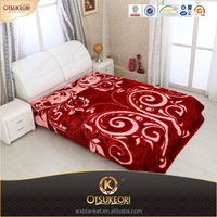 Fashion 100% Polyester Printed Raschel Blanket Wholesale