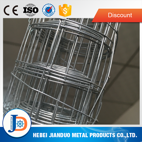 Great price 10 gauge galvanized welded wire mesh