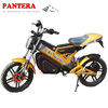 PT-E001 Powerful Chongqing Foldable 1500W CE Approved Good Quality Electric Motorcyle