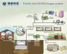 China Puxin 10m3 Family size Biogas Plant