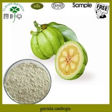 Pure Natural organic garcinia cambogia extract powder
