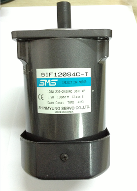 SMS DC Standard Gear Motor AC Synchronous Servo Motor 9IF120S4C-T For Industrial products/Machinery equipment/Medical equipment
