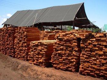 Teak Wood Direct From Zimbabwe Buy Teak Product On
