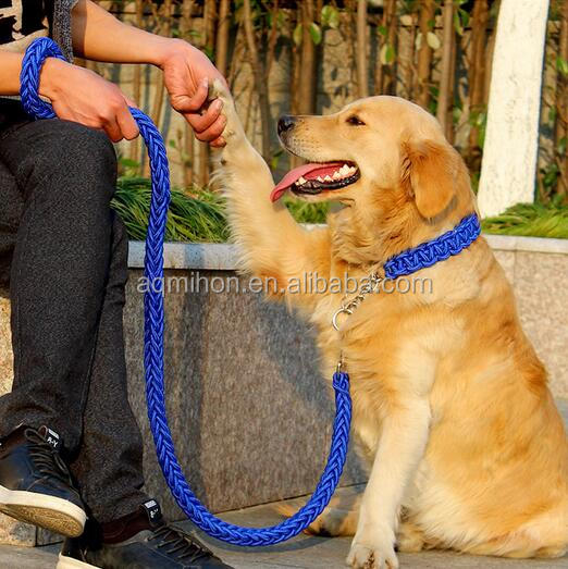 P Chain Nylon Braided Dog Collar&Leash for Golden Retriever