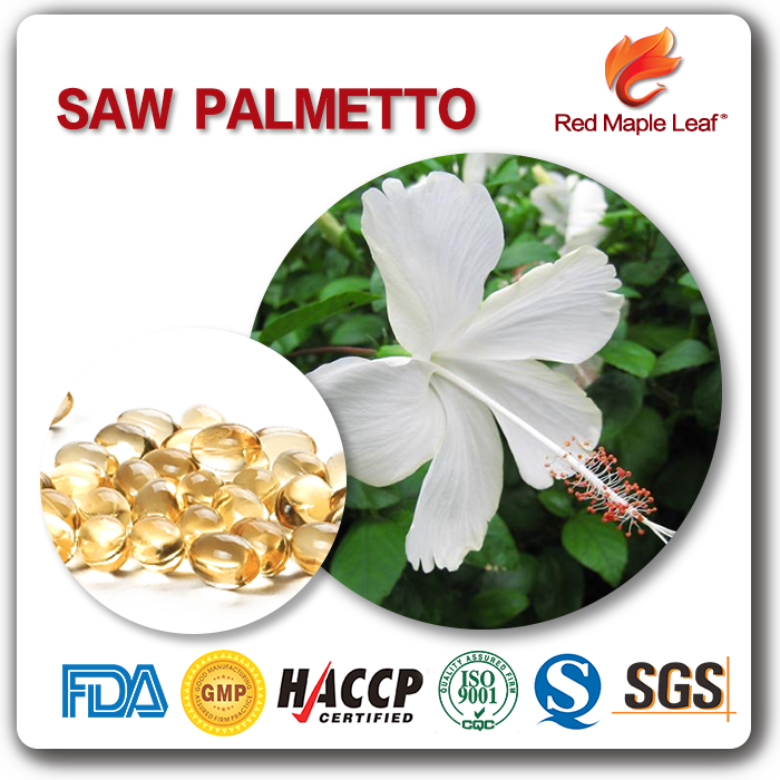 500mg Treat Hair Lose Essence Extract Saw Palmetto Softgels