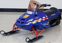125cc 150cc 250cc 600cc of petrol snow mobile