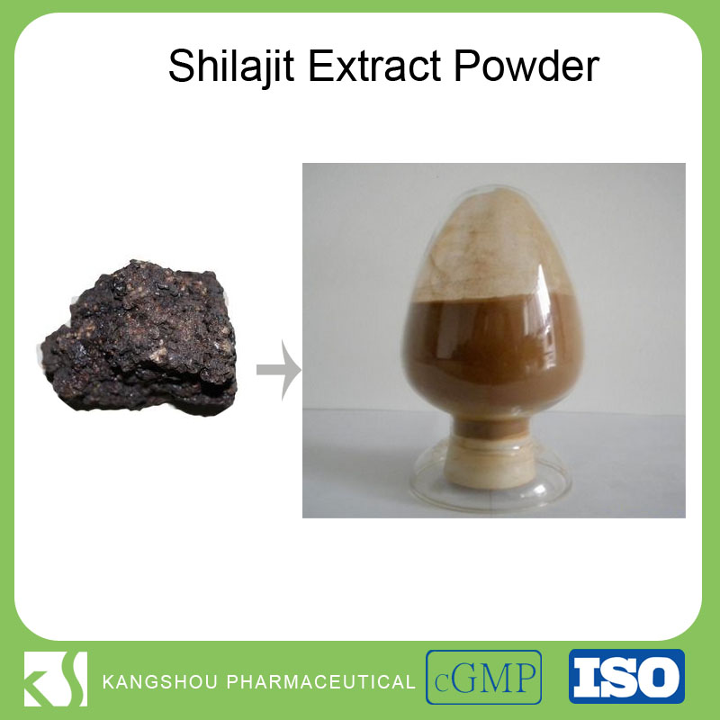 China supplier pure provide health product shilajit extract shilajit powder