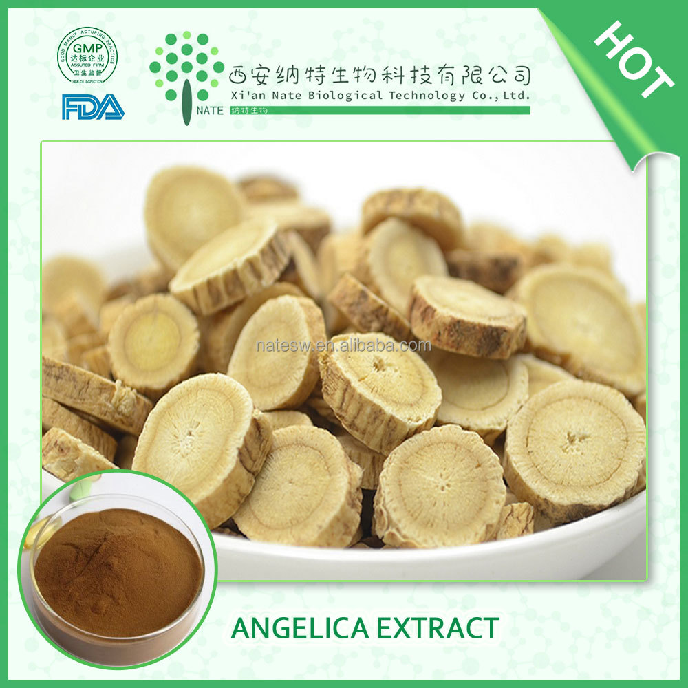 Best Quality Angelica Extract ligustulide 1% chinese Medicine Herbs