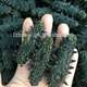 Beat price of natural low-Fat black dried sea cucumber,trapang,Stichopus japonicus