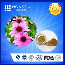 for herb medicine supplier 3% cichoric acid organic echinacea extract