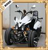 New 250CC Three Wheel Motorcycle EEC