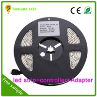 Fashion accessory 12v smd5050 rgb dream color led strip with controller