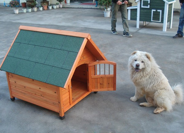 2016 most popular wooden dog house