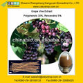 Grape Vine Extract, Polyphenols 30%, Resveratrol 5% from GMP manufacturer