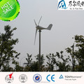 CE ROSH 100w 12v wind generator low price