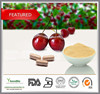 Top quality Natural Acerola cherry extract, Acerola extract 17% 25% Vitamin C powder