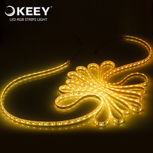 KEEY High Brightness 5050 RGB LED Strip Light For Christmas / New Year Decoration QYR4-DD604N
