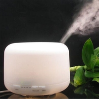 hot sale warm white Car and USB Ultrasonic Air Purifier