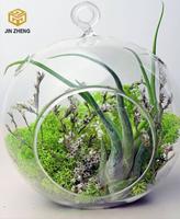 Blown Glass Hanging Vase Hydroponic Terrarium Succulents Planter Flower Vase