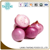 /product-detail/new-crop-fresh-chinese-red-onion-60319531053.html