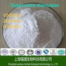 Natural Superoxide Dismutase Powder l Corn Seed Extract SOD(Superoxide Dismutase)