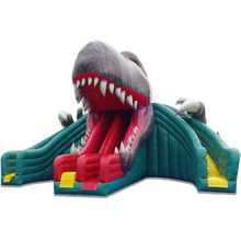 PK Outdoor inflatable commercial water slides