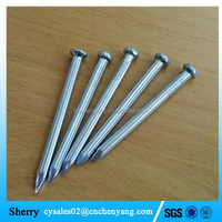 Competitive price customized size steel galvanized concrete nail