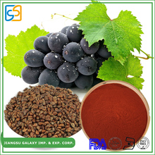 GMP manufacturer polyphenol 80% / proanthocyanidin 95% health first grape seed extract