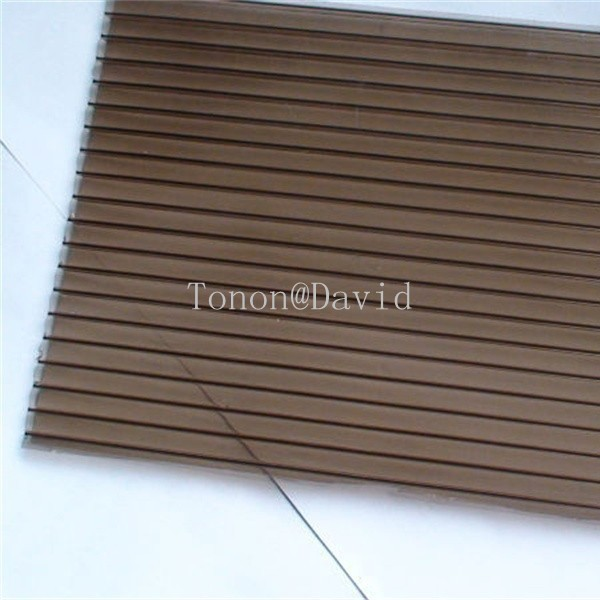 Guangdong polycarbonate sheet manufacturer twin wall polykarbonat panel made in China (TN1831)