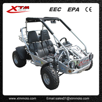 China 300cc street legal dune buggies for sale