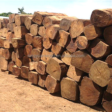 Nigeria Kosso cheap and high quality furniture grade square logs Hot sale and bulk sale