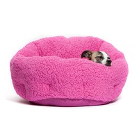 Deep Dish Cuddler dog kennel design for pet