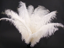 Alibaba NO.1 Leading Feather Factory ostrich feather with Beautiful Natural