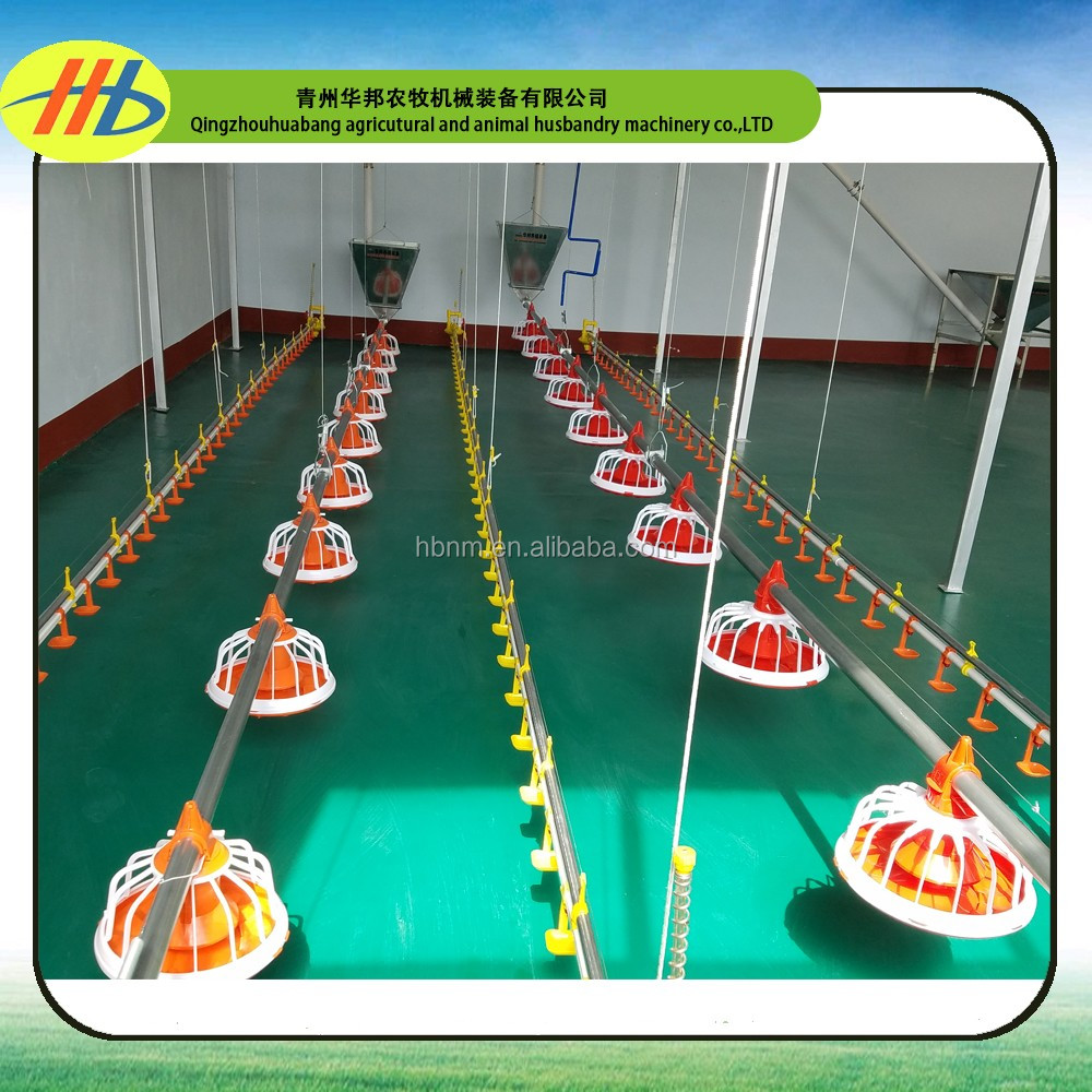 complete controlled poultry shed automatic poultry chicken pan feeding system for broiler and breeder