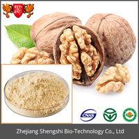 bulk price blanched walnut meat seed Extract powder
