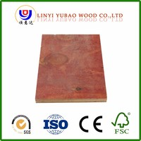 high density 19mm Red plywood for Construction