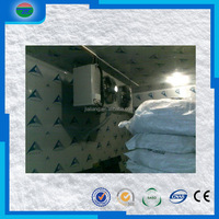 Latest Fashion first Choice fresh cooler room cold storage