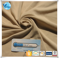 2016 China Hot Sale 100% Polyester Plain Nude Mesh Fabric