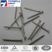 price per kg iron nail from china supplier