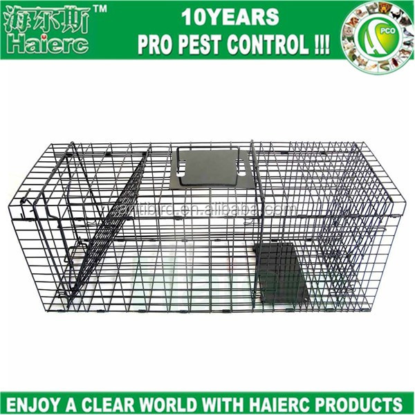 foldable squirrel cage trap 24*7*7inch catch release cage rodent live traps