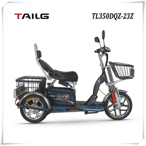 48V Voltage and 350W Power cargo electric tricycle for transportation