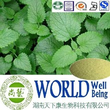 Hot sale Lemon Balm extract/Lemon Balm P.E./Pain relief plant extract