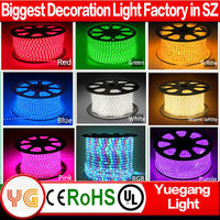 Hot sale 60leds/m floor light led plant grow light strip IP65 continuous length flexible strip light with CE ROHS certification