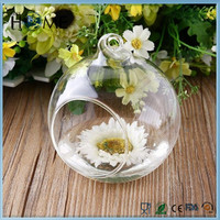 Home decor new arrived Terrarium air plants glass hang flower vase pots modern home hydroponic decoration hang