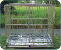 BD605 stainless steel dog cage