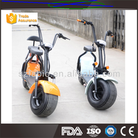 Electric Citycoco 1000W Motor Colorful Motorcycle Scooter with FABIO Battery